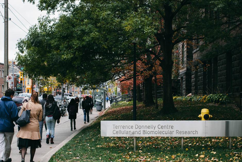 University's research income rises seven per cent