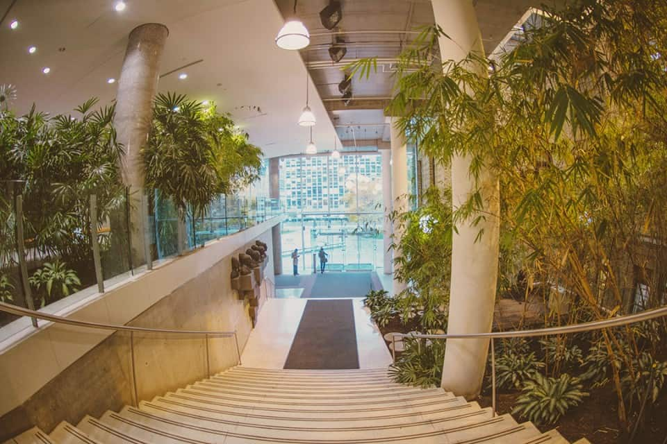 Living Architecture Tour showcases green spaces on campus