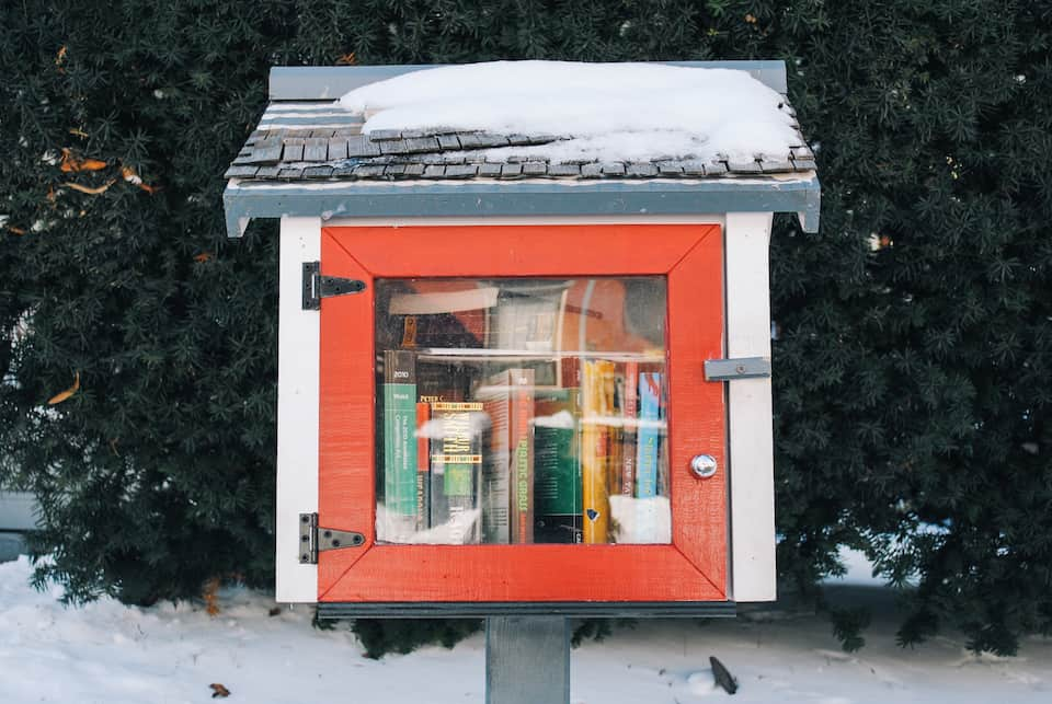 Reviewing the contents of Toronto's Little Free Libraries