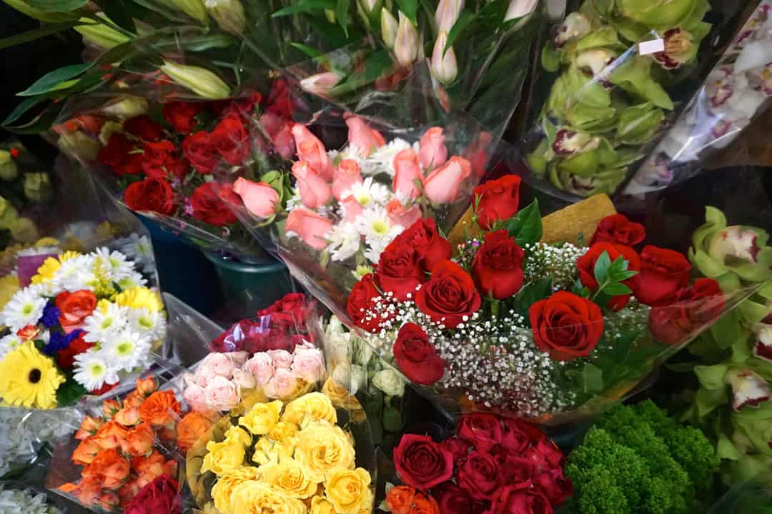 These tips will keep your flowers fresh and help them last. SOFIA LUDWIG/THE VARSITY
