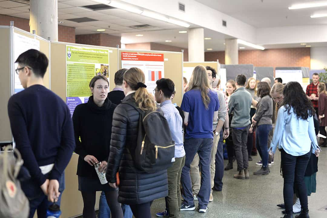Undergraduate students take on Ecology & Evolutionary Biology Research Fair